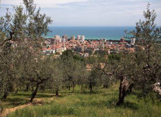 Biludlejning Pescara